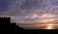 Las murallas de Ávila (España) (alfonsocarlospalencia) Tags: murallas ávila atardecer nubes golondrinas escalonamiento azul blanco horizonte santa teresa torreones puesta crepúsculo dibujos negro velada amigos