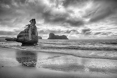 20170702-IMG_3694_HDR-Edit-Edit Cathedral Cove 22 (hirschwrites) Tags: coromandelpenninsula earth hdr hahei nz newzealand northisland other