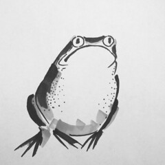 A toad (Bushman.K) Tags: toad drawing exercise