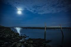 潟湖的月色⋯⋯攝於七股(Moon fall @ Cigu lagoon oyster fields)。 (Charlie 李) Tags: 夜晚 蚵架 蚵田 潟湖 七股區 台灣 台南 5d3 canon moonlight night taiwan tainan cigu oysterfields lagoon