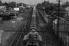TRIN (eluizesk) Tags: tren bn slp mexico laferro rieles trainwholetrain labestia