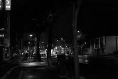 Let's go to Niji-kai (the second party) (しまみゅーら) Tags: fujifilm xe2 ebc fujinon 28mm f35 monochrome bw