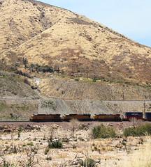UP (nim_90) Tags: freight cajonpass up unionpacific