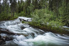 Grand Teton NP 10 (Jason Blalock) Tags: park nationalpark nationalparkservice nps wyoming grandteton grandtetonnationalpark grandtetons grandtetonsnationalpark cascades water longexposure