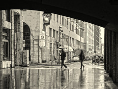 In a rainy day (Fabio Pratali LI) Tags: livorno people bw rain pioggia ombrelli