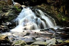 Bear's Den Waterfall (moniquef123) Tags: waterfall water river flowing rocks green white nature landscape beautiful serene peaceful