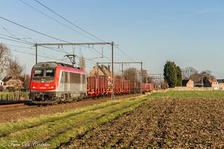 SNCF BB 36014  Melsele