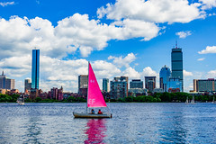 Pink Sailboat on the Charles River ((Jessica)) Tags: mitsailingpavilion sailboat pinksail pinksailboat river charlesriver boston newengland massachusetts cambridge backbay water clouds sky sony sonyrx100 sonyrx100v summer sailboats pinksails