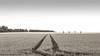 Das Land (Carlos Lacano) Tags: landscape field trees structure art bw black white leica digilux 2 grevenroich germany carlos lacano