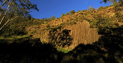 Organ Pipes and half-moon : late winter afternoon . . . (Clement Tang **bbbusy**) Tags: winterafternoon nature nationalgeographic concordians closetonature victoria australia shadows gumtree organpipesnationalpark foops iucn rockformation basaltrockpillars bluesky jacksonscreek volcanicrockpillars scenicsnotjustlandscapes landscape naturalmonument halfmoon lunar ngc npc
