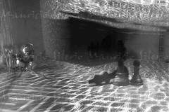 la sombra de Rocinante (Mauricio Silerio) Tags: underwater quixote quijote chess surreal surrealisme tales tale piece meikon sony alpha a5000 nikon d3200