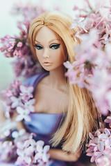 IMG_9782 (Evgenia Ariel) Tags: poppy parker groovy galore integrity toys fahion dolls