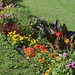 Bagdy Gábor kereszténydemokrata főpolgármester-helyettes nyitotta meg a 41. Egynyári Virágbemutatót a Margitszigeten