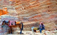 A bedouin taking a break in Petra (maios) Tags: rosecity rose city abedouintakingabreakinpetra bedouin takingabreak petra nikond7100 nikon d7100 maios jordan animal horse color rock
