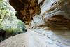 20170709-12-Bluff River Gorge sandstone cliffs (Roger T Wong) Tags: 2017 australia bluffrivergorge buckland rogertwong sel1635z sony1635 sonya7ii sonyalpha7ii sonyfe1635mmf4zaosscarlzeissvariotessart sonyilce7m2 tasmania bushwalk caves cliff erosion gorge hike outdoors sandstone tramp trek walk