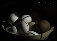 2017_365-164 - Egg Bowl (Kenny Boy1) Tags: shadow contrast eggs wire 365 june 2017