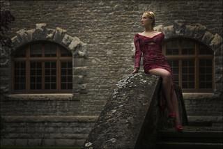 La dama del castillo