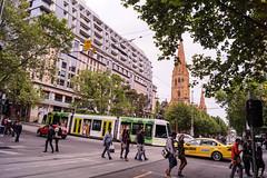Collins Street / Swanston Street (andrewsurgenor) Tags: transit transport publictransport electric streetscenes citytransport city urban trams streetcars trolleys melbourne victoria australia