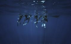 Freediving Photography (piercarlobacchiphotography) Tags: freediving apnea sea sardinia underwater ocean sony people