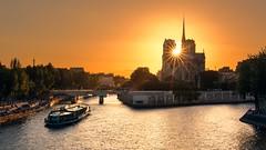 Where's the Hunchback ? (Thierry Hudsyn) Tags: canon6d sigma50mmf14dghsmart paris notredame seine bateaumouche sunset couchédesoleil sunstar goldenhour