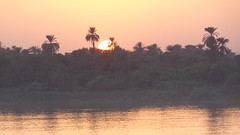 Nile Sunset (Rckr88) Tags: nile sunset nilesunset nileriver upperegypt river upper egypt africa travel travelling water reflection reflections wave waves nature outdoors rivers sun sunlight