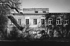 foma-400-16 (Vasily Ledovsky) Tags: voigtlander bessat 35mm film bw blackandwhite colorskopar 3525 35 25 foma fomapan 400 push 800 klimovsk