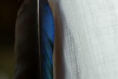 Kanat (halukderinöz) Tags: kanat wing magpie saksağan natürmort stilllife ankara türkiye turkey canon eos7d tekstür texture doku canoneos7d hd