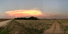 """""""You Take The High Road, I'll Take The Low Road and We'll Meet in The Clouds"""" Panoramic of a West Texas sunset on spectacular cloud formations. Landscape Sky Sunset Scenics Cloud - Sky Rural Scene Road Agriculture Clouds Sunset_collection Dramatic Sky Tex (bradhodges09) Tags: landscape sky sunset scenics cloudsky ruralscene road agriculture clouds sunsetcollection dramaticsky texaslandscape texas westtexas"""