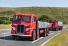 Last Motormans Run June 2017 080 (Mark Schofield @ JB Schofield) Tags: road transport haulage freight truck wagon lorry commercial vehicle hgv lgv haulier contractor foden albion aec atkinson borderer a62 motormans cafe standedge guy seddon tipper classic vintage scammell eightwheeler