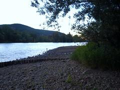 Bord de Saône (leoj69) Tags: rivière saone caillou