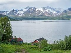 NB-264.jpg (neil.bulman) Tags: norway cruise scandanavia harstad thomson landofthemidnightsun thomsoncelebration troms no