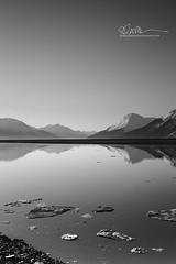 _64A3228 (Ed Boudreau) Tags: alaska landscape alaskalandscape landscapephotography reflection turnagainarm sewardhighway alaskamountains mountains mountainrange water waterreflection mountainreflectinginwater snow snowcappedmountains