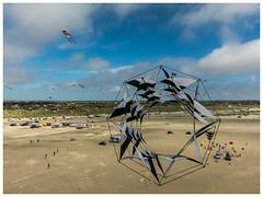 Kite fliers meeting Fanø