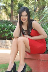 Indian Actress Nikesha Patel Hot Sexy Images Set-2 (39)