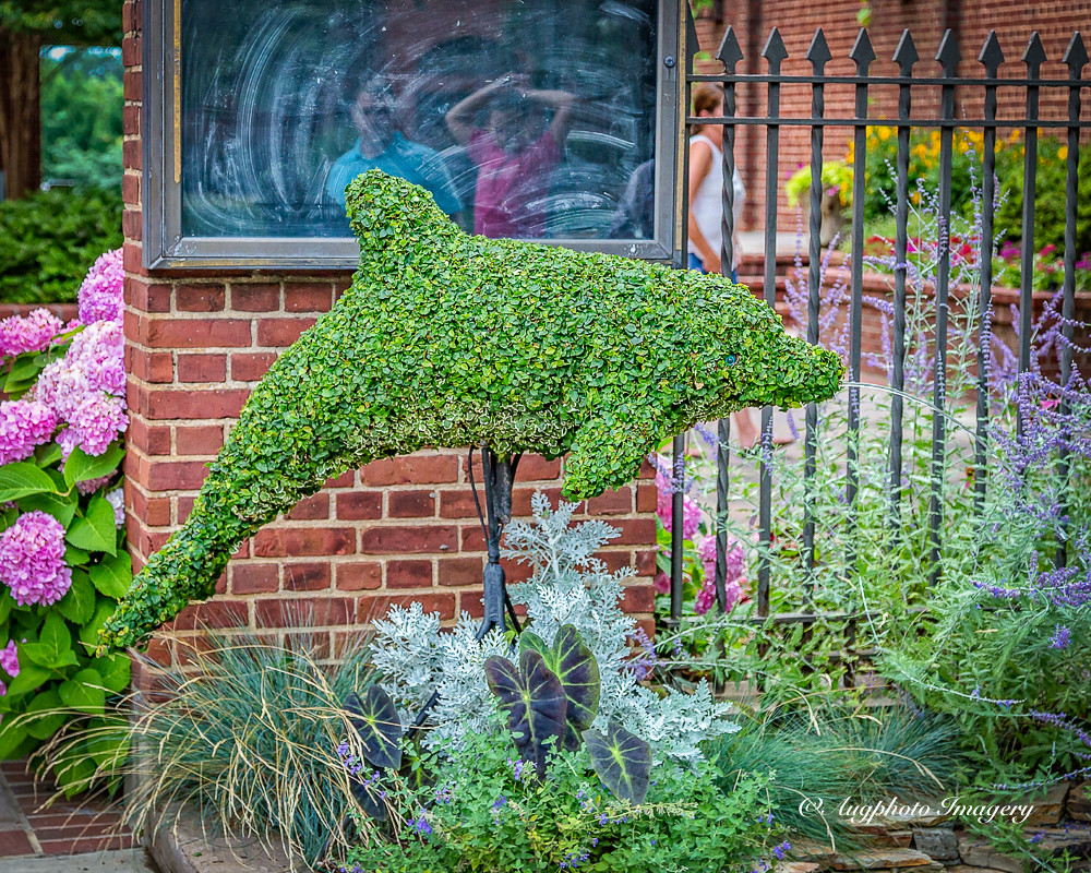 The Worlds Best Photos Of Greenwood And Topiary Flickr Hive Mind