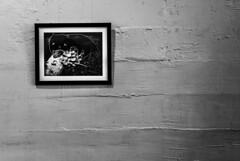 Cuadro (Oxkar G) Tags: nikon d200 exterior city ciudad lente manual blanconegro blanco negro noir blanc blackwhite monocromo gente cuadro interior