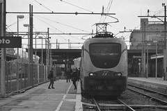 grosseto marzo 2017 #5 (train_spotting) Tags: grosseto trenitalia divisionepasseggeri frecciabianca ic510 intercity510 e402b172 e402b1727ti nikond7100