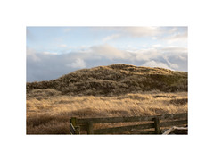 IMG_0050 (csinnbeck) Tags: distagon 35 28 zeiss contax eos m10 t west coast denmark dk spring easter 35mm sun sunset evening dunes fence