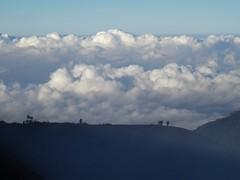 Walk among the Clouds (Canis lupus alba) Tags: kawah ijen kawahijen indonesia java licin banyuwangi volcano caldera cloud hiking