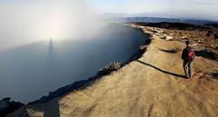 On the Rim (Canis lupus alba) Tags: kawah ijen kawahijen indonesia java licin banyuwangi volcano caldera hiking crater