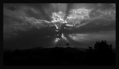 Atardecer de Junio (foto.mruiz) Tags: atardecer puestadesol málaga nubes sol sun cloud rayosdesol sunset arboles´ paisaje