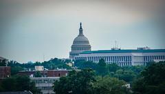 2017.07.02 DC People and Places, Washington, DC USA 7260