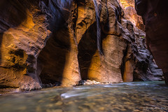 Zion Narrows (NettyA) Tags: 2017 canyon sonya7r thenarrows usa utah virginriver zionnarrows zionnationalpark travel wallstreet le water river rock