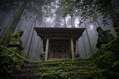 Whispering - II (小川 Ogawasan) Tags: japan japon shinto forest jinja shrine kumamoto kyushu