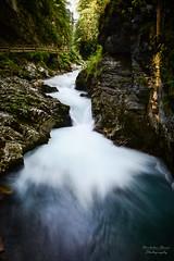 Slovenia | Vintgar Gorge (Nicholas Olesen Photography) Tags: vertical slovenia europe vintgar gorge stream water river flowing motion rocks movement narrow travel nikon d7100 nature outdoors