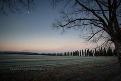 Tuscany (Fernando Xambre) Tags: italian europe eurotrip árvores cipreste sunrise amanhecer toscana itália italy trees
