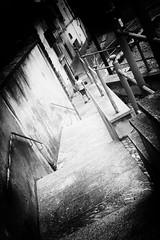 Castiglione Olona  - 1 - 09072017 - BW (cscarpatic) Tags: 50mm castiglioneolona leica m9 noctilux f095 bw blancoynegro biancoenero blackandwhite blackwhitephotos
