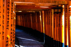 Fushimi Inari Taisha XXXIV (Douguerreotype) Tags: shrine lantern temple kyoto gate architecture red japan vermilion torii