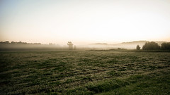 Morning Dew (Carl Weis1) Tags: nikon d800 misty morning outdoor nature dew sunrise beauty bracketing