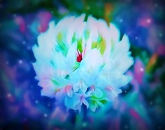Fireflies and clover (JLS Photography - Alaska) Tags: clover flower weed art watercolor painting painterly jlsphotographyalaska digitalart digitalmanipulation macro